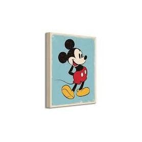Lienzo Diseny Mickey 30x40 cm