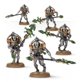 copy of Necron Immortals