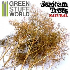 Set árboles espuma de mar